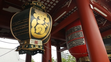 Magnifiques lanternes...